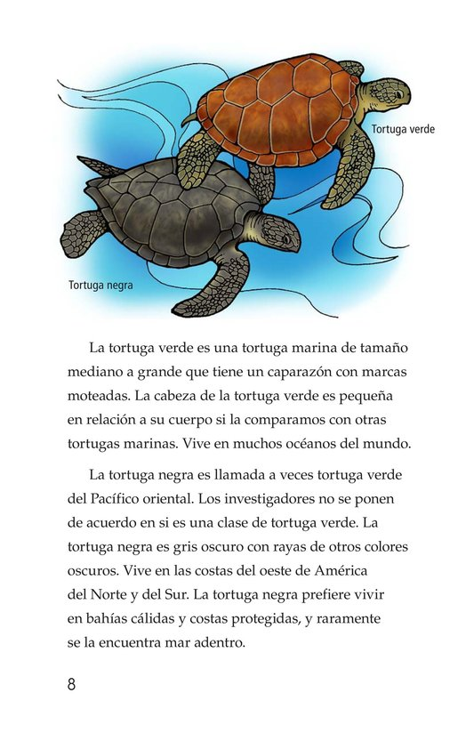 Book Preview For Sea Turtles Page 8