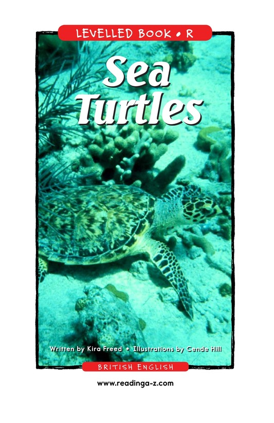 Book Preview For Sea Turtles Page 1