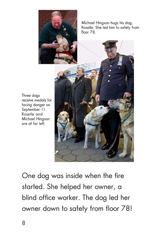 Book Preview For Heroes of September 11 Page 8