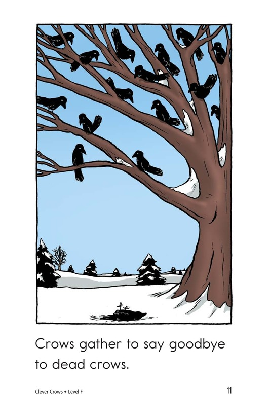 Book Preview For Smart Crows Page 11