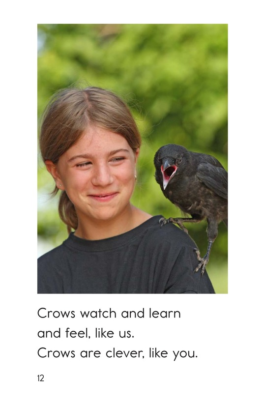 Book Preview For Smart Crows Page 12