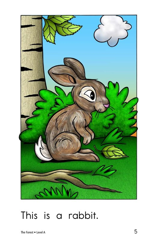 Book Preview For The Forest Page 5