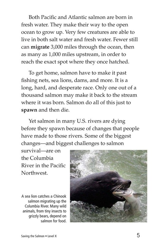 Book Preview For Saving the Salmon Page 5
