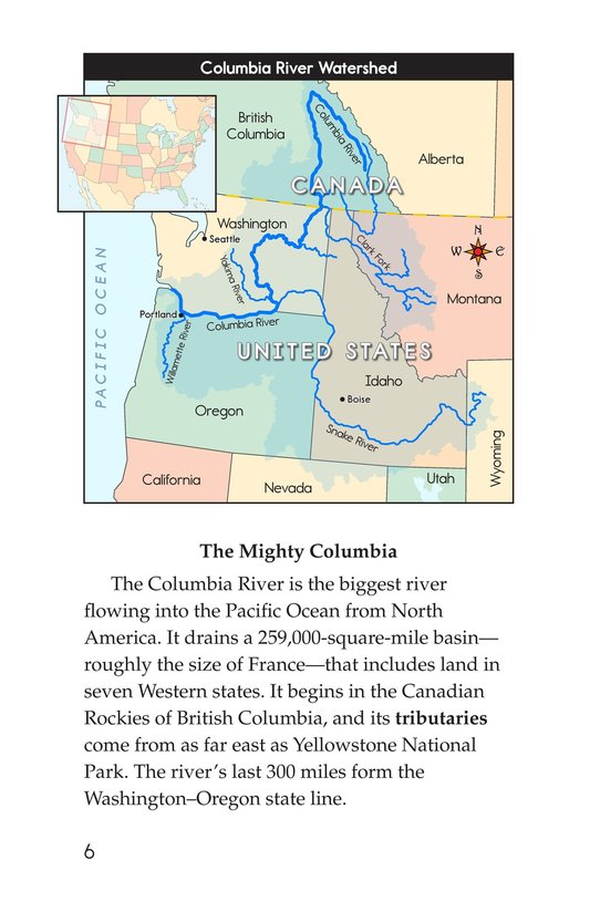Book Preview For Saving the Salmon Page 6