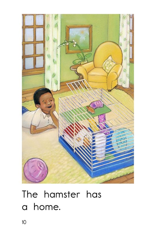 Book Preview For Hamster Home Page 10