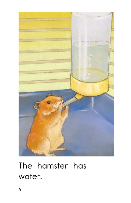 Book Preview For Hamster Home Page 6