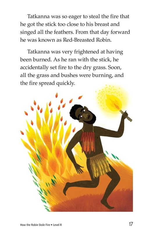Book Preview For How the Robin Stole Fire Page 17