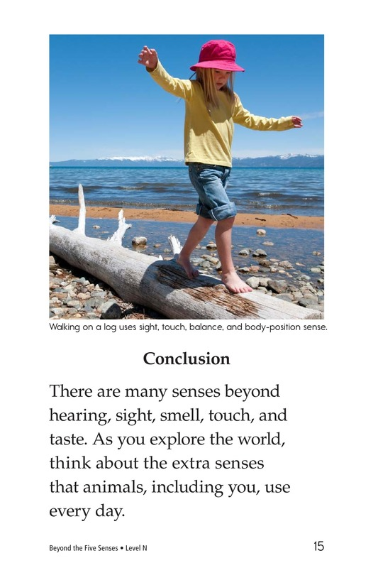Book Preview For Beyond the Five Senses Page 15