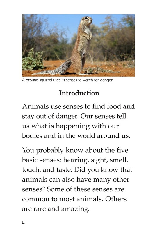Book Preview For Beyond the Five Senses Page 4
