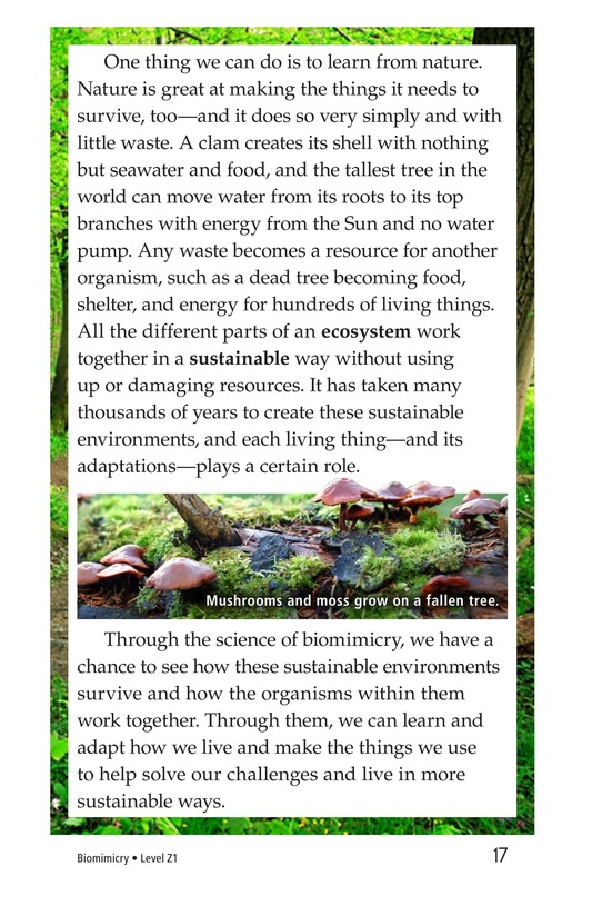 Book Preview For Biomimicry Page 17