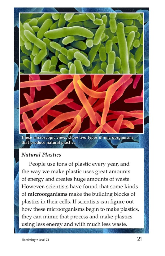 Book Preview For Biomimicry Page 21