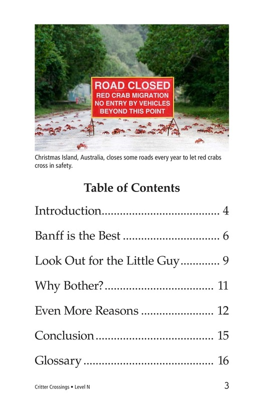 Book Preview For Critter Crossings Page 3