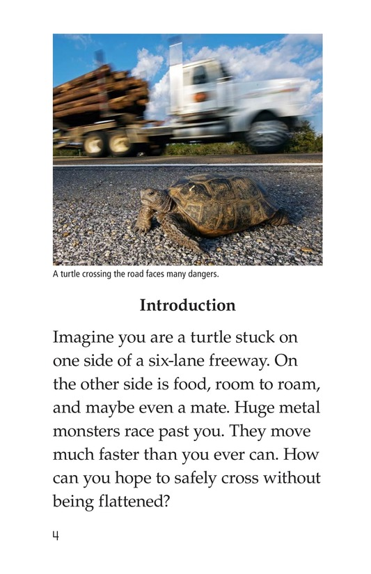 Book Preview For Critter Crossings Page 4