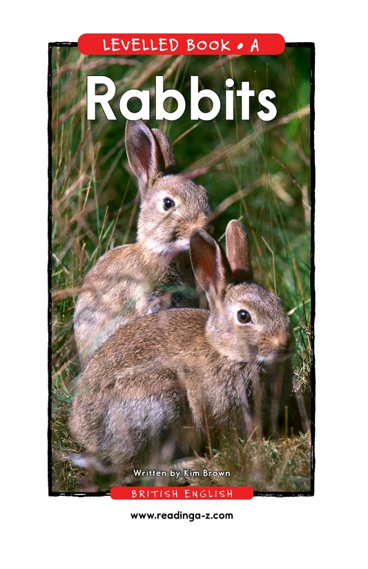 Book Preview For Rabbits Page 1