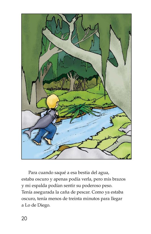 Book Preview For Fishing in Simplicity Page 20