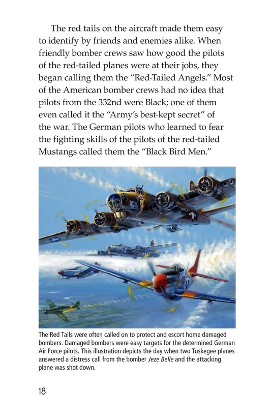 Book Preview For The Tuskegee Airmen Page 18