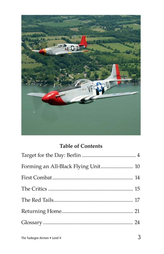 Book Preview For The Tuskegee Airmen Page 3