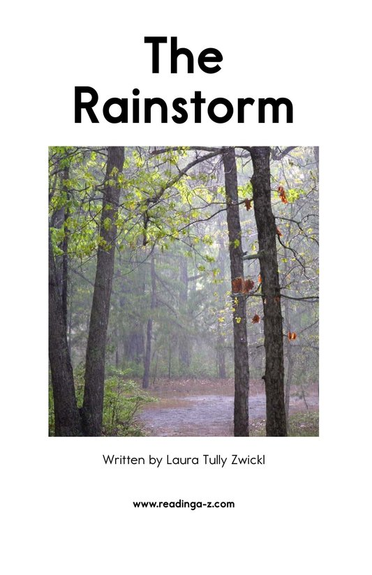 Book Preview For The Rainstorm Page 2