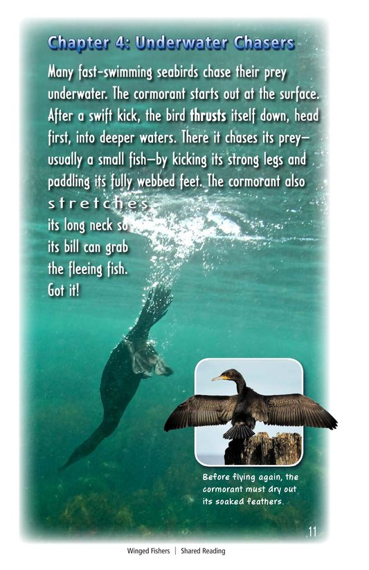 Book Preview For Winged Fishers Page 11