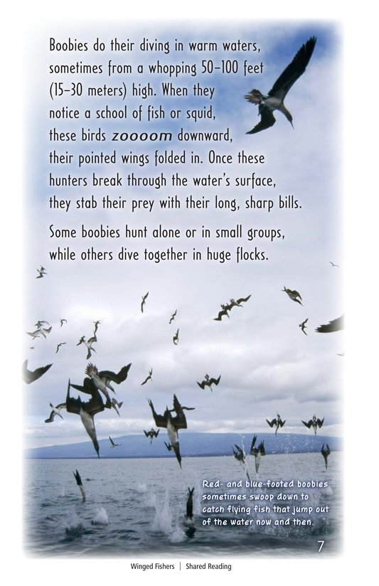 Book Preview For Winged Fishers Page 7