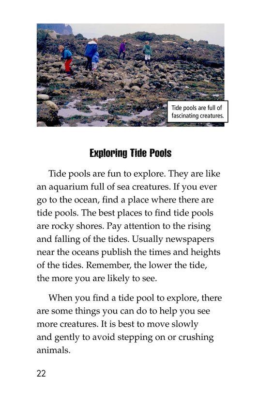 Book Preview For Exploring Tide Pools Page 22