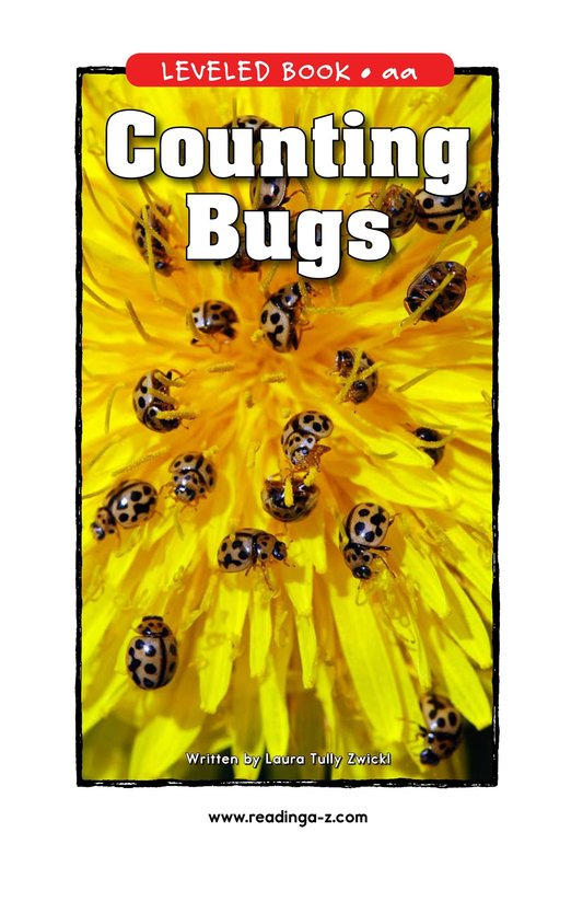 Book Preview For Counting Bugs Page 1