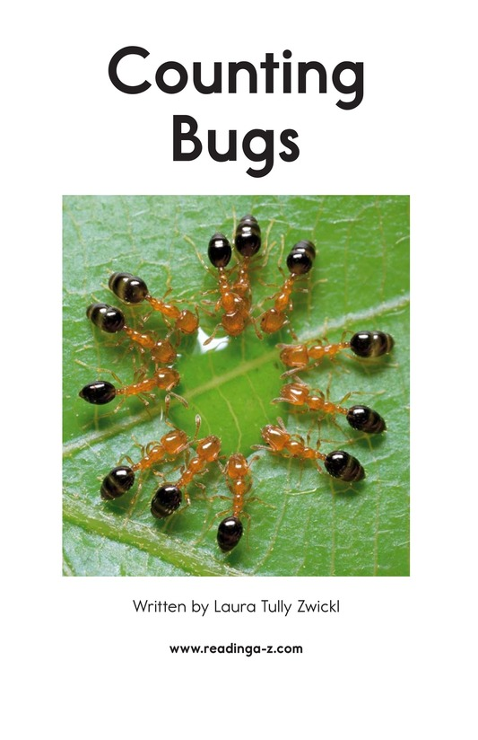 Book Preview For Counting Bugs Page 2