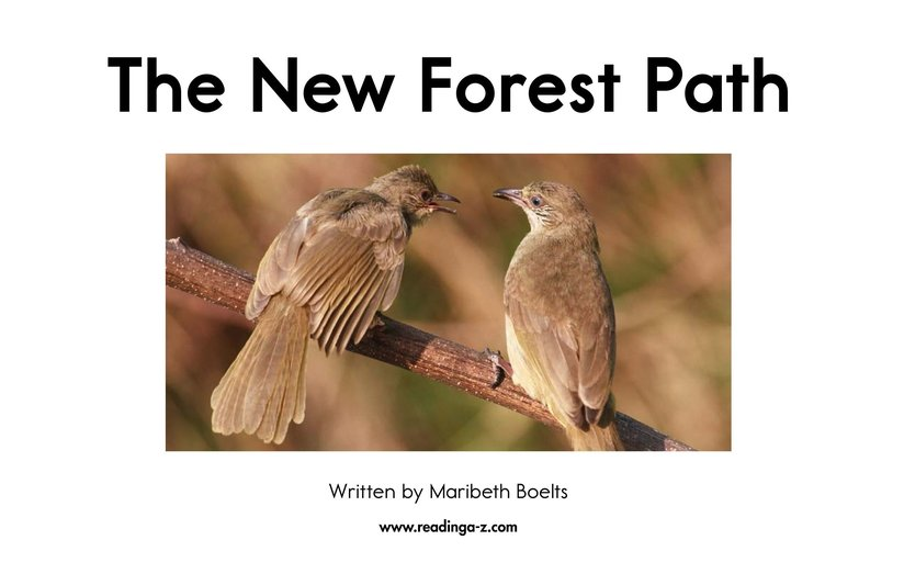 Book Preview For The New Forest Path Page 2