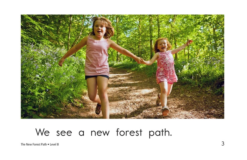 Book Preview For The New Forest Path Page 3