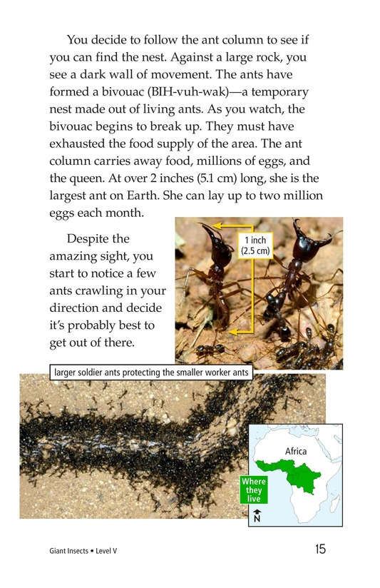 Book Preview For Giant Insects Page 15