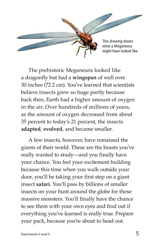 Book Preview For Giant Insects Page 5