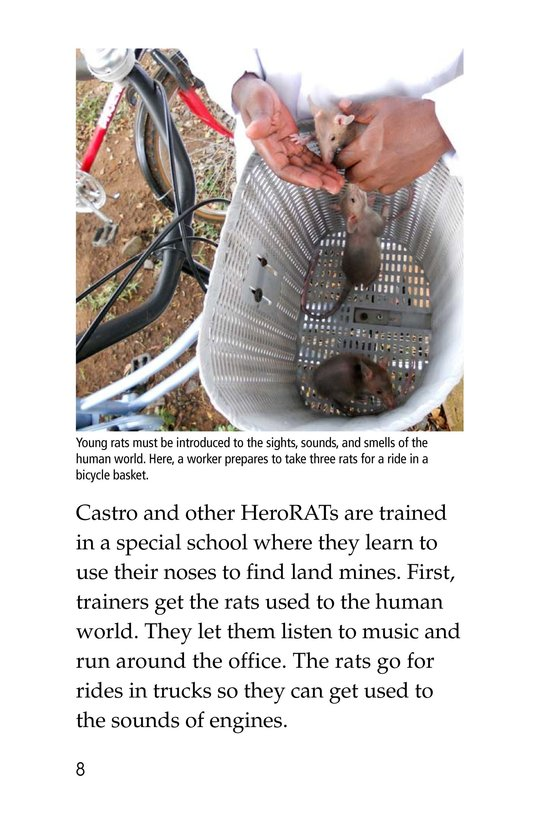 Book Preview For HeroRATs: Rats Who Save Lives Page 8