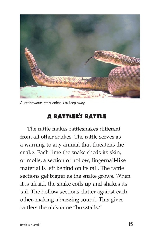 Book Preview For Rattlers Page 15