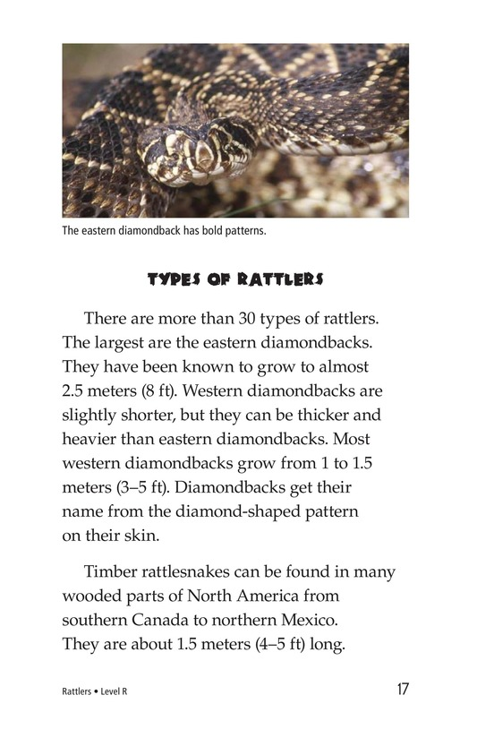 Book Preview For Rattlers Page 17