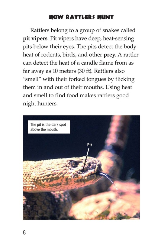 Book Preview For Rattlers Page 8
