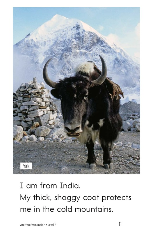 Book Preview For Are You From India? Page 11