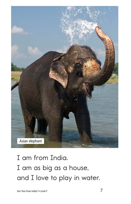 Book Preview For Are You From India? Page 7