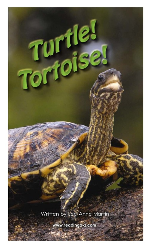 Book Preview For Turtle! Tortoise! Page 2