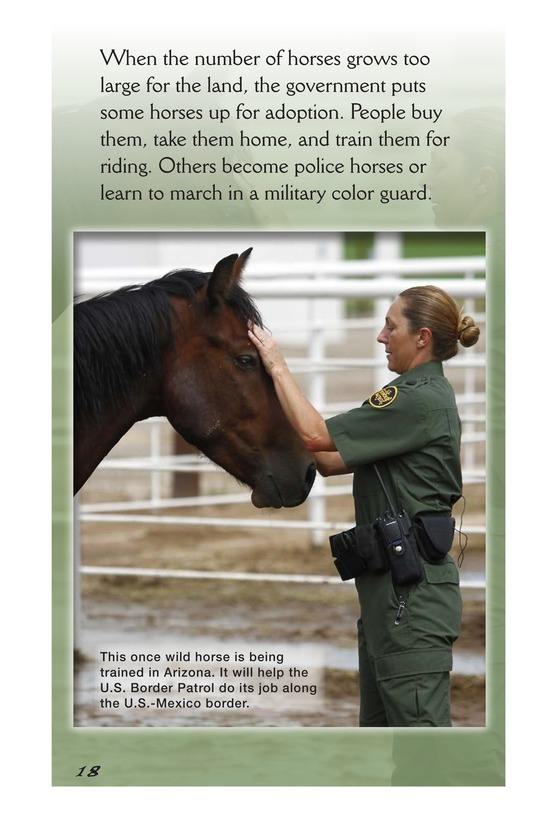 Book Preview For America's Wild Horses: Living Free Page 18