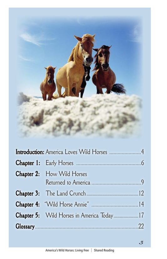 Book Preview For America's Wild Horses: Living Free Page 3