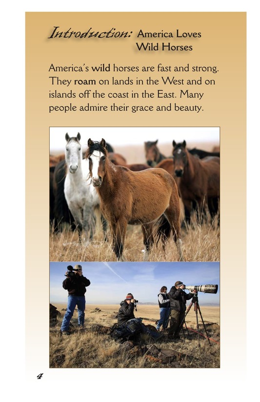 Book Preview For America's Wild Horses: Living Free Page 4
