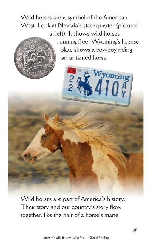 Book Preview For America's Wild Horses: Living Free Page 5