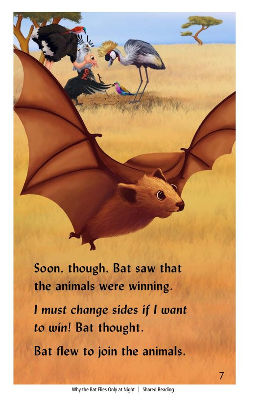 Book Preview For Why the Bat Flies Only at Night Page 7
