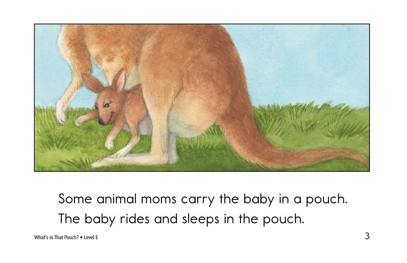 Book Preview For What's In That Pouch? Page 3