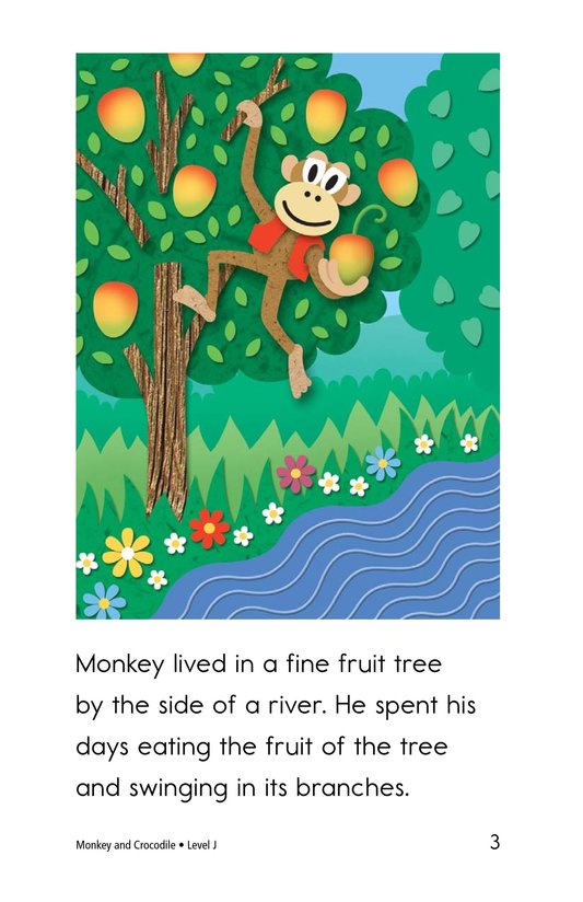 Book Preview For Monkey and Crocodile Page 3