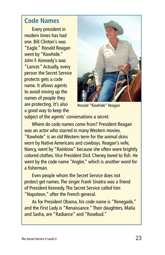 Book Preview For The Secret Service Page 23