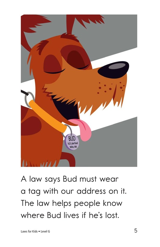 Book Preview For Laws for Kids Page 5
