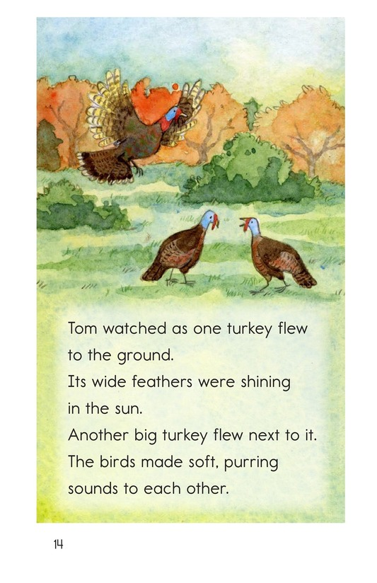 Book Preview For Turkeys in the Trees Page 14