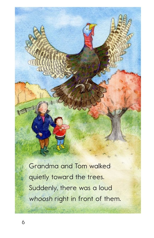 Book Preview For Turkeys in the Trees Page 6