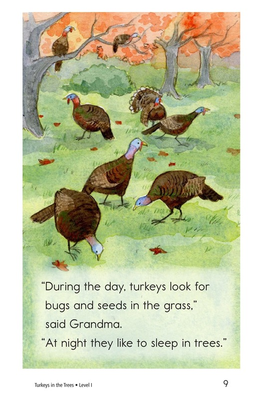 Book Preview For Turkeys in the Trees Page 9